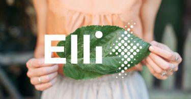 Volkswagen Elli kümmert sich um die Energiewende. Foto: Volkswagen